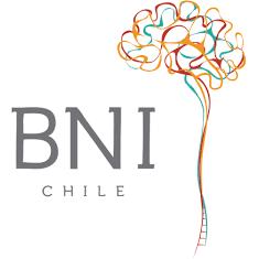 Logo BNI cuadrado