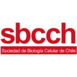 Logo SBCCH